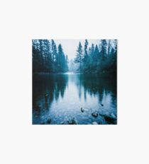 Forest Mountain Fog - Blue Lake Reflection Art Board