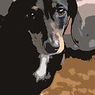 Dachshund Dog Abstract by Oldetimemercan
