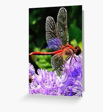 Red Dragonfly on Violet Purple Flowers Greeting Card