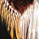 Birds of a feather  by Diana Sénèque