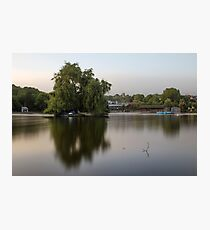 Willow on Boating Lake Photographic Print