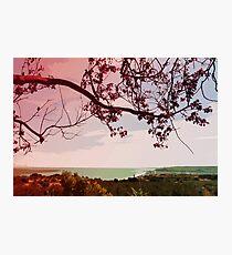 Springtime View Photographic Print
