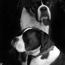 Best Friends by Rosina  Lamberti