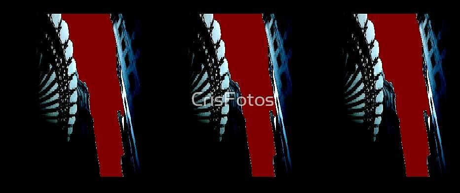Reds by CrisFotos
