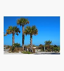 Beach Loafing Photographic Print