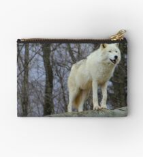 Arctic Wolf Watching Studio Pouch