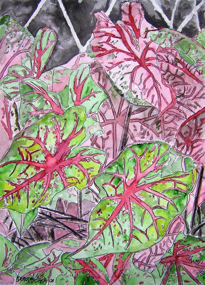 Caladiums tropical plant painting by derekmccrea