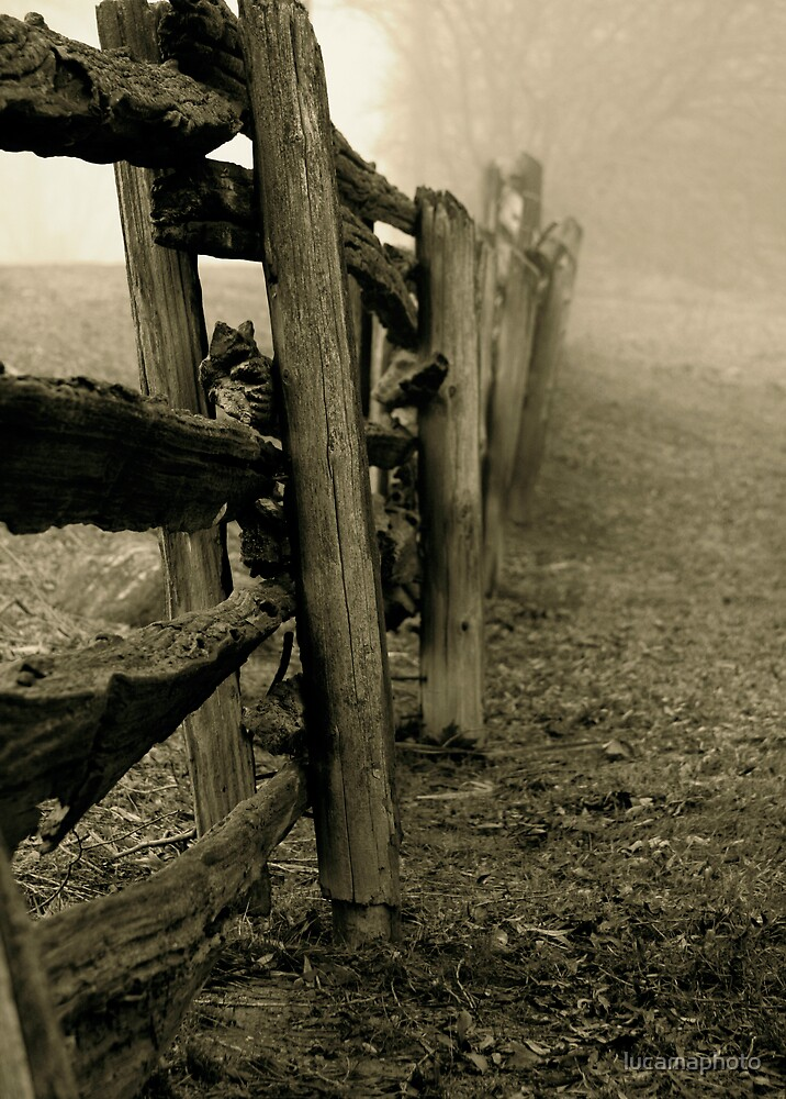 the wooden fence by lucamaphoto