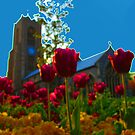 Flowers Outside St Giles by Ruski