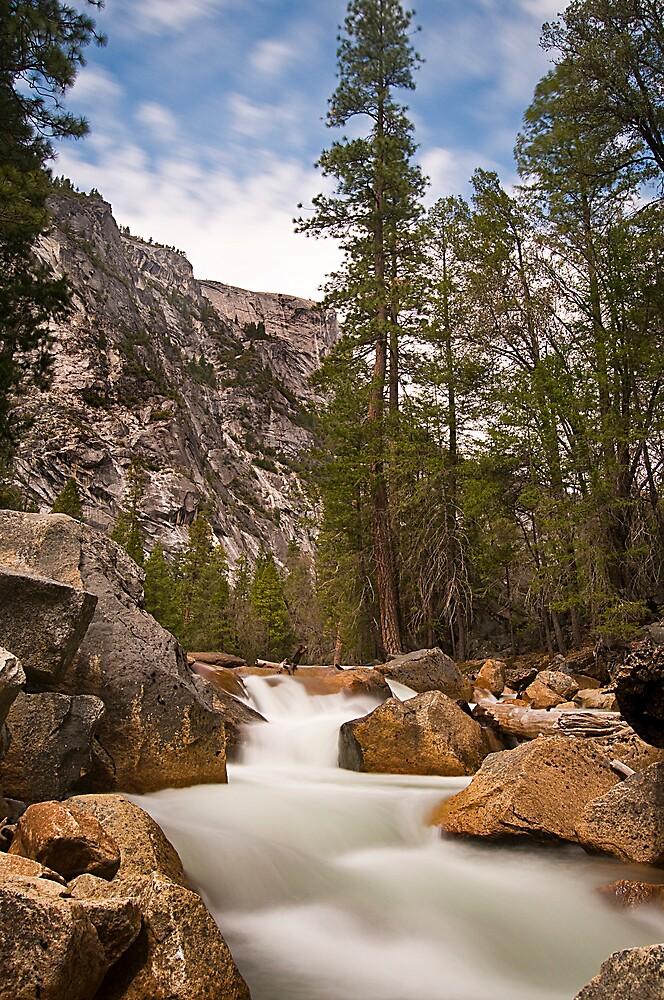 Yosemite Stream by steverobles