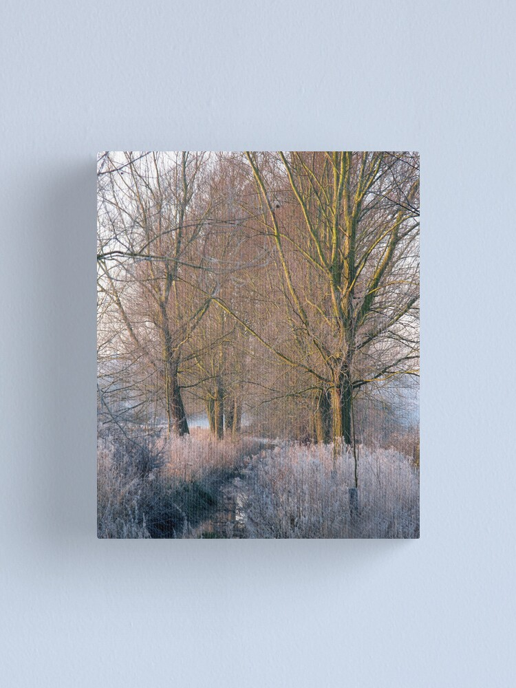Alternate view of Frost Stream Canvas Print