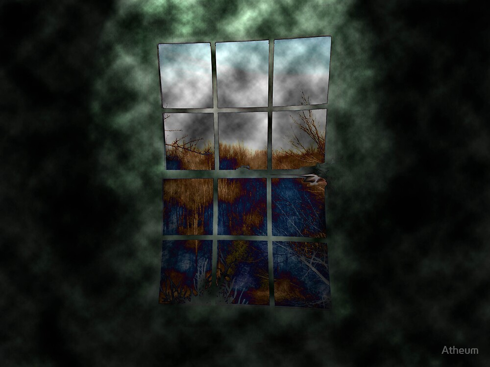 The Disconfigured Window by Atheum