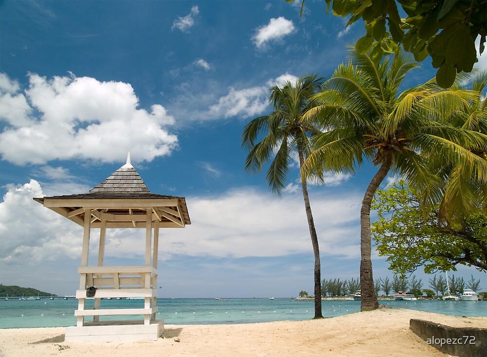 Ocho Rios' beach-Jamaica by alopezc72