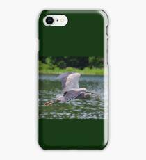 Blue heron  flying iPhone Case/Skin