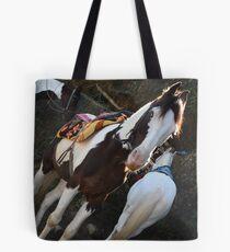 Horse ! Tote Bag