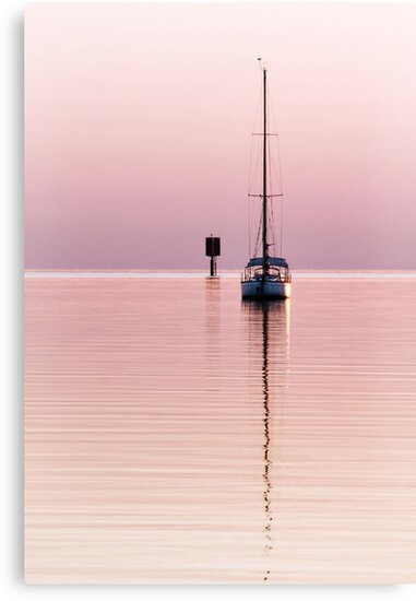 Rose-Coloured Dawn by Heather Prince