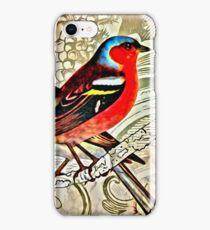 BRIGHT BIRDIES COLLAGE iPhone Case/Skin