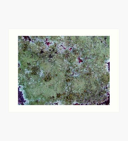 Amazon from space!!! Art Print
