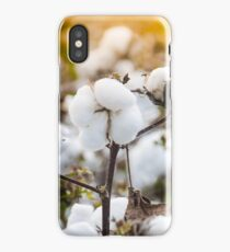 Cotton Field 4 iPhone Case