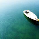 Row Boat by Ben de Putron