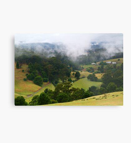 Otway Farmlands, Forrest  Metal Print