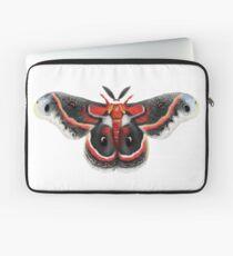 Beautiful Cecropia Moth Illustration Laptop Sleeve