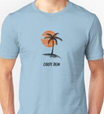 Carpe Diem Seize The Day Inspirational T-Shirt T-Shirt