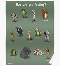 How Are You Feeling? Poster