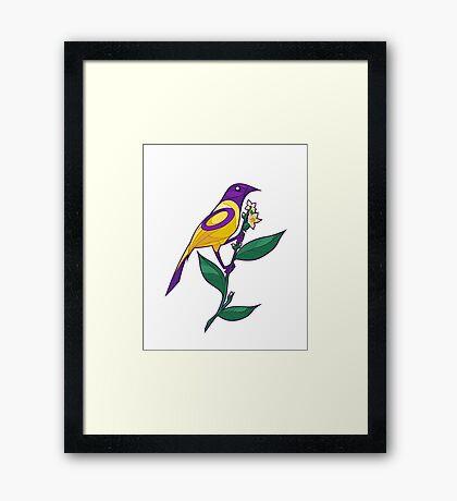 Pride Birds - Intersex Framed Print
