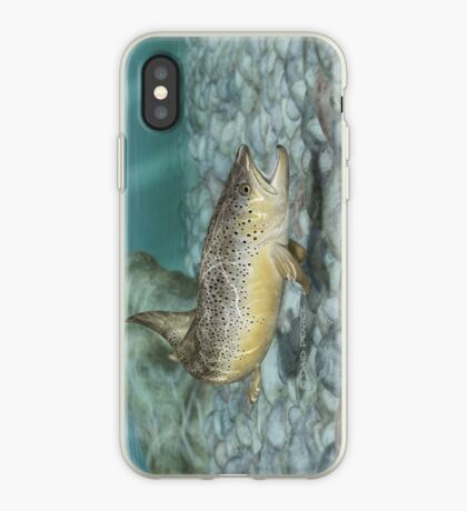 River Brown iPhone Case