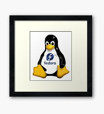 Tux Penguin - Fedora Linux Framed Print