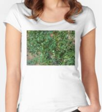 garden tomato plant 06/29/17 Women's Fitted Scoop T-Shirt