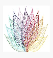 Multi-coloured Layered Leaves Design Photographic Print