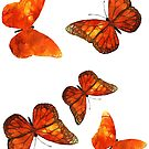 Watercoloured Inks - Butterfly 2 by Sally Barnett