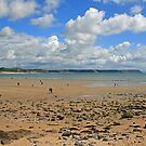 Gower Peninsula, Oxwich Bay by RedHillDigital