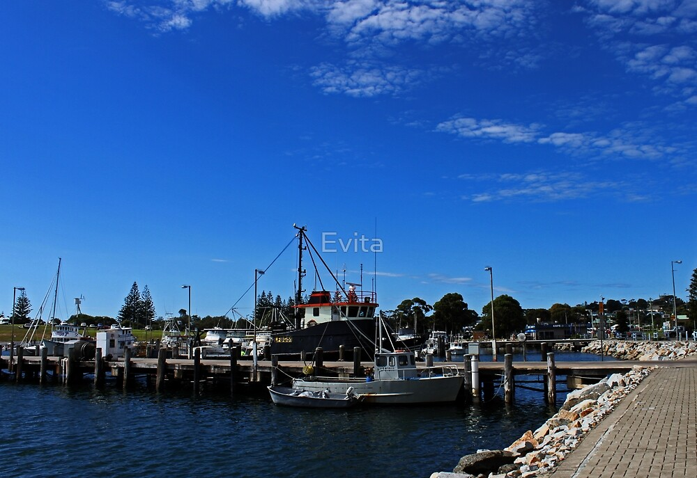 Bermagui Habour #2 by Evita