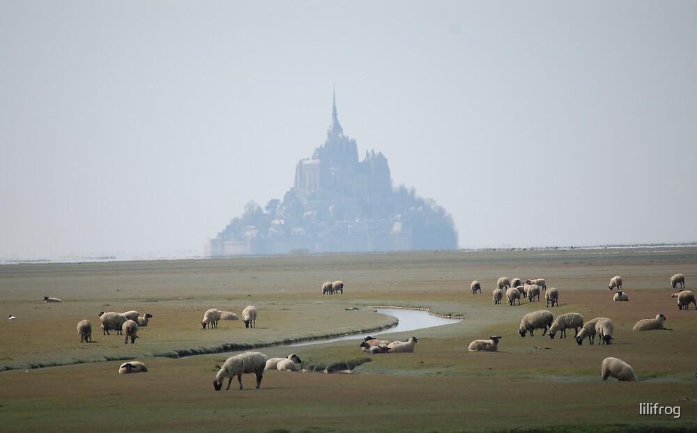 Au loin ...le Mont...... by lilifrog