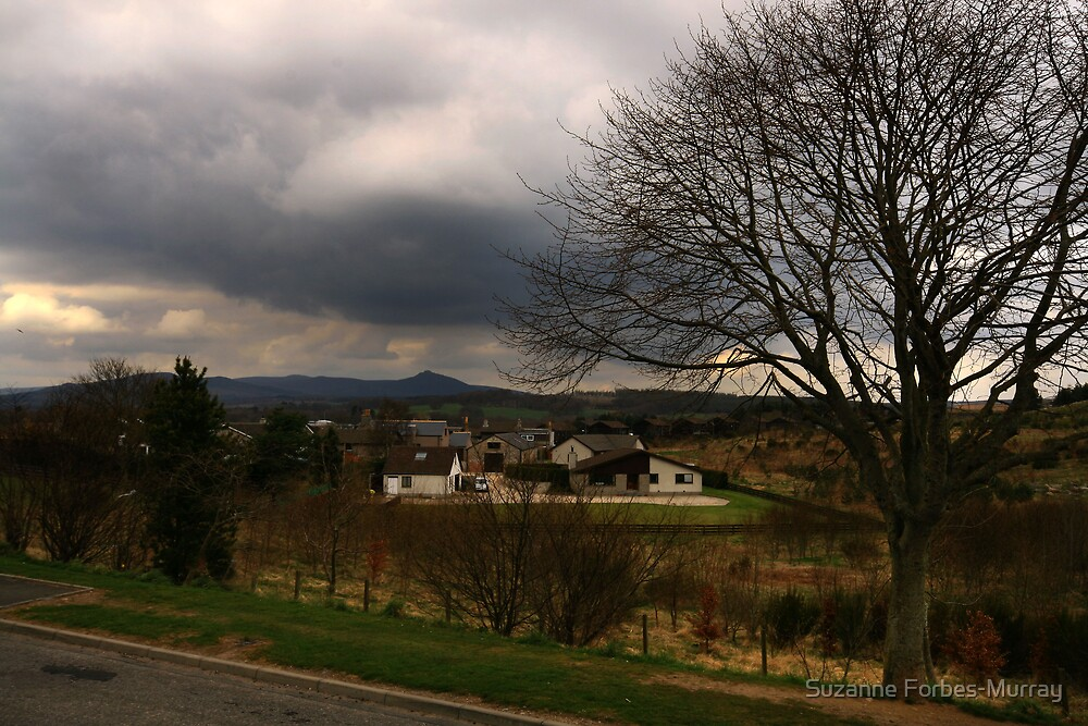 Spring in Kemnay by Suzanne Forbes-Murray