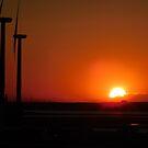New Jersey Sunset      ^ by ctheworld