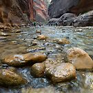 Canyon Beauty by Sue  Cullumber