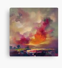 Magenta Crescendo Canvas Print