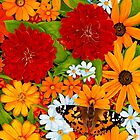 Painted Lady by Sharen Chatterton