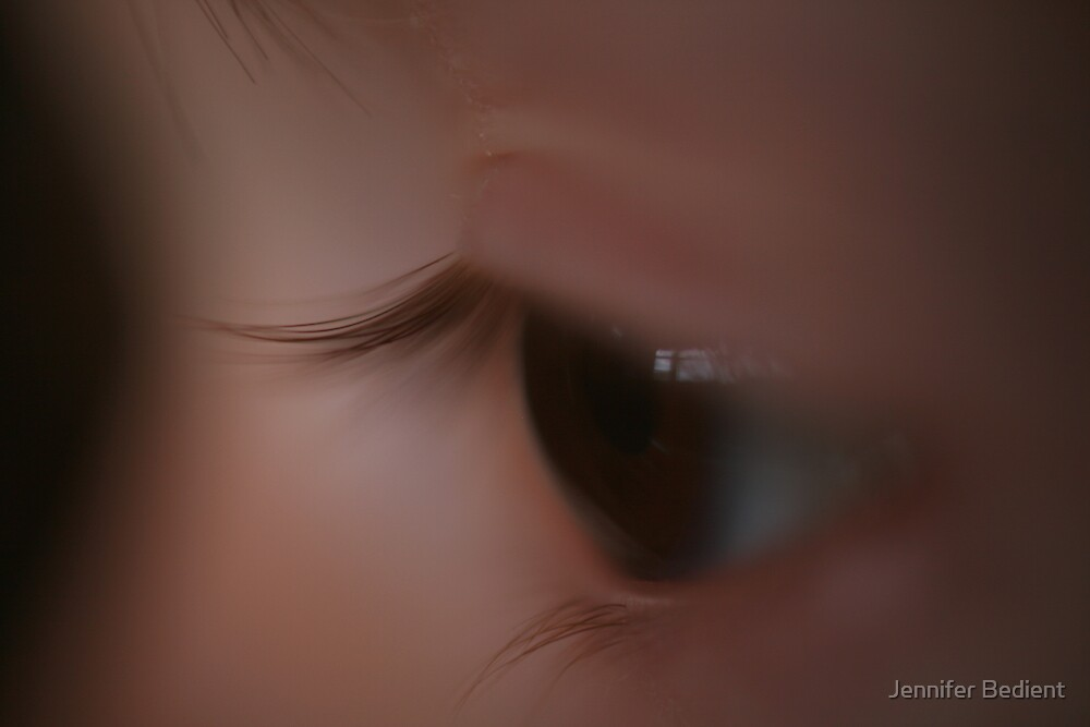 Through the eye of ... by Jennifer Bedient