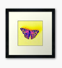 Fluro butterfly up Framed Print