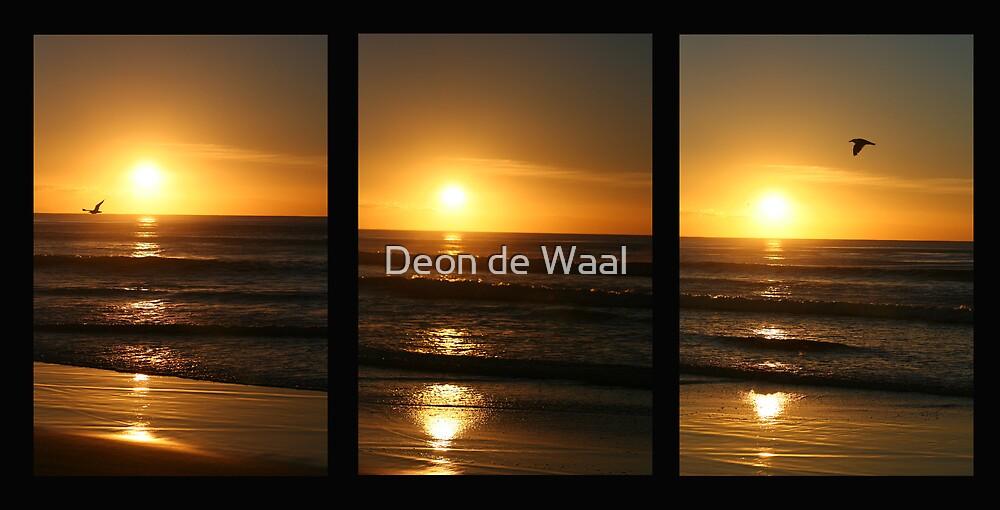 Fly away Peter, Fly away Paul by Deon de Waal