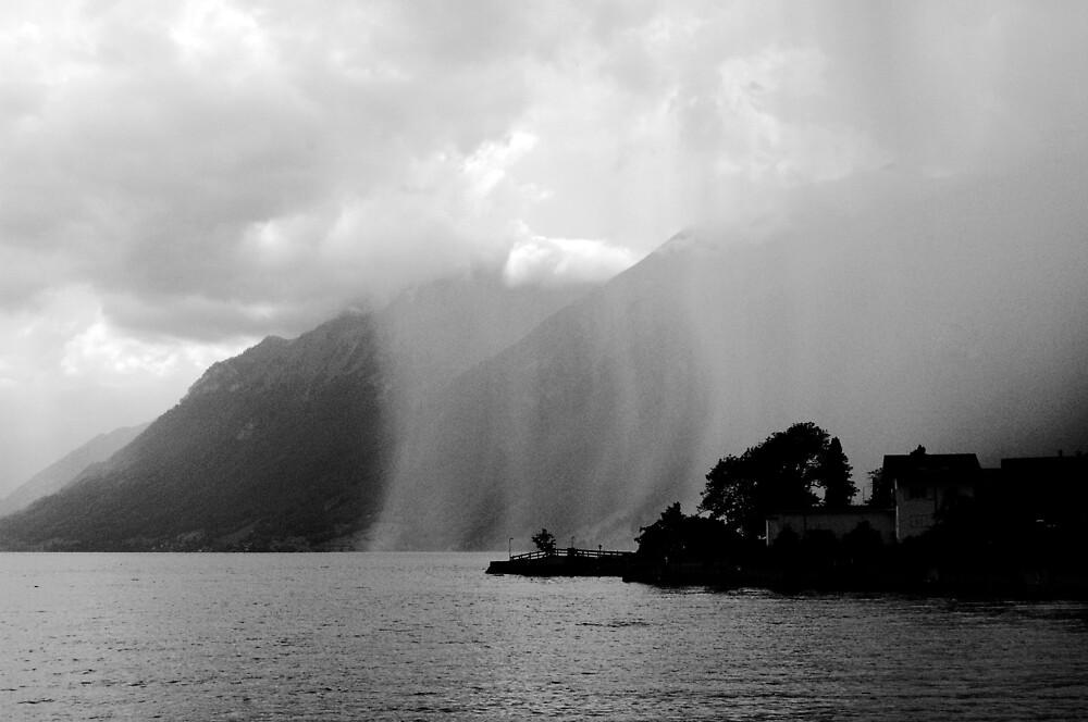 rain by liga