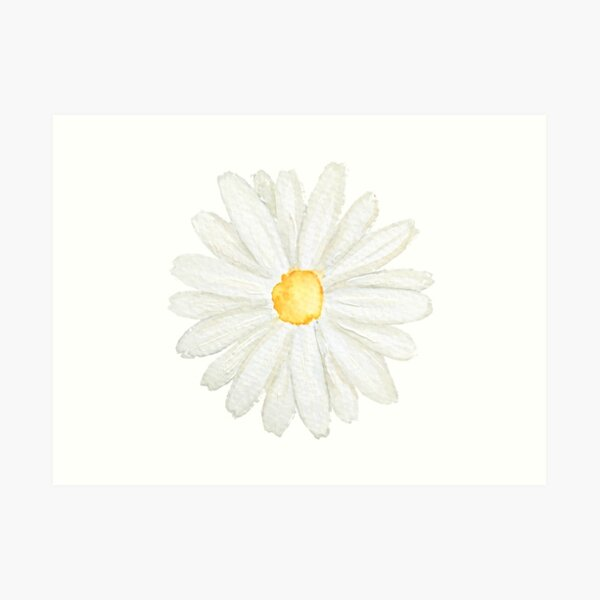 one little white  daisy watercolor  Art Print