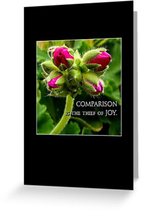 comparison is the thief of joy by Lenore Locken