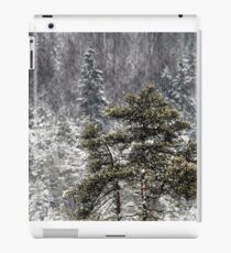 30.12.2014: Pine trees iPad Case/Skin
