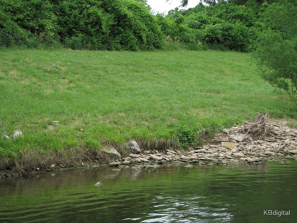 The grassy riverbank by KBdigital
